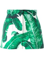 Dolce And Gabbana Tropical Shorts Green