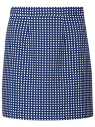 Sugarhill Boutique Hayley Spot Jacquard Skirt Blue