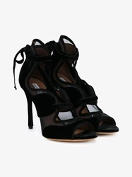 Tabitha Simmons Freya Suede And Mesh Lace Up Sandals Black