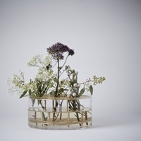 Mjolk Ang Flower Vase In Glass And Brass By Eva Schildt 30410