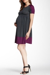 Momo Maternity Amelia Colorblock Skater Dress Gray