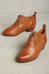 Anthropologie Kelsi Dagger Brooklyn Court Oxford Booties Honey