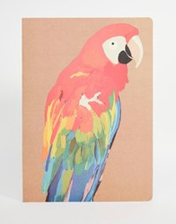 Paperchase Let's Squawk A4 Kraft Exercise Book Multi