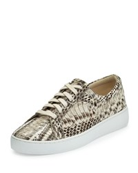 Michael Kors Collection Valin Runway Snake Lace Up Sneaker Natural