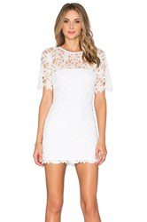 Karina Grimaldi Rudas Lace Mini Dress White