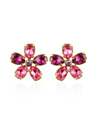 A Z Collection Flower Gold Plated Clip On Earrings