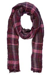 Dorothy Perkins Scarf Wine Bordeaux