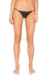 Blue Life Passion Flower Bikini Bottom Black