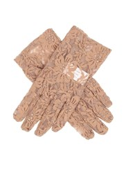 Dents Ladies Stretch Lace Glove Taupe