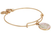 Alex And Ani Pink Special Delivery Charm Bangle Rafaelian Gold Finish Bracelet