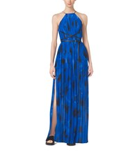 Poppy Print Pleated Silk Georgette Column Gown