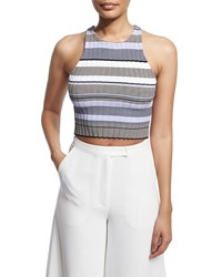 Elizabeth And James Sleeveless Racerback Striped Crop Top Thistle Multi Thistle Multi