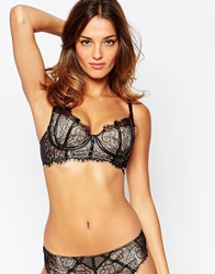 Ultimo Black Label Cher Longline Bra