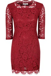 Alice And You Scallop Lace Dress Burgundy