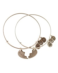 Alex And Ani Best Friends Forever Set Of Two Bangles Charity By Design Collection Rafaelian Silver