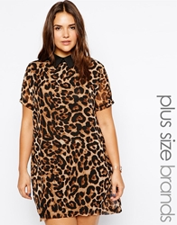 Alice And You Animal Print Shift Dress With Contrast Black Collar