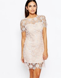 Club L Shift Dress In All Over Crochet Nude Pink