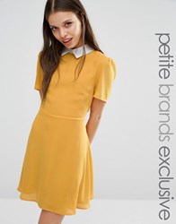 Fashion Union Petite Finley Aline Skater Dress With Collar Detail Mustard Yellow