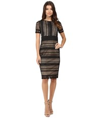 Rsvp Enna Crochet Lace Bodycon Midi Dress Black Nude Women's Dress Multi