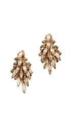 Elizabeth Cole Sydney Earrings Nude