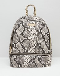 Aldo Faux Snake Backpack With Zip Around Pocket Snake Multi