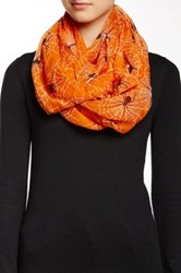 David And Young Spider Web Infinity Scarf Orange