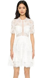 Alexis Luciana Lace Dress Off White Lace