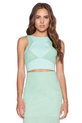 Minty Meets Munt Legacy Top Mint