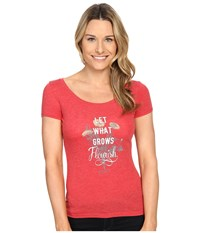 Woolrich Scenic Overlook Tee Let What Grows Women's T Shirt Red