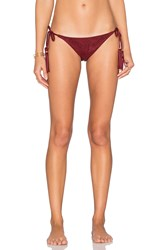 Ale By Alessandra Holy Cow Tie Side Bottom Maroon