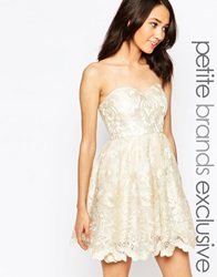 Chi Chi Petite Chi Chi London Petite Petite Embroidered Lace Bandeau Prom Dress Creamgold