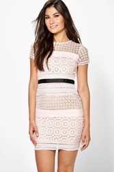 Boohoo Ita Crochet Panelled Bodycon Dress Pink