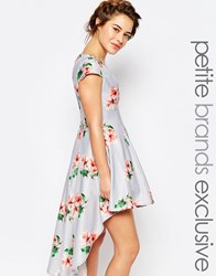 True Decadence Petite Mini Prom Dress In Allover Floral With High Low Hem Multi