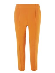 Dorothy Perkins Sunflower Joggers Yellow