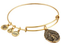 Alex And Ani Guardian Of Peace Charm Bangle Rafaelian Gold Finish Charms Bracelet
