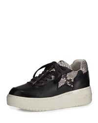 Ash Fool Platform Leather Sneaker Black Roccia