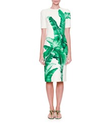 Dolce And Gabbana Banana Leaf Print Sheath Dress Foglie Banano Foglie Banano F.B