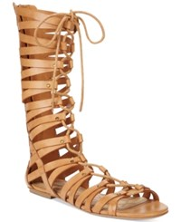 American Rag Maya Lace Up Gladiator Sandals Only At Macy's Women's Shoes