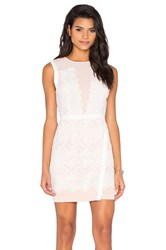 Greylin Lana Two Tone Lace Dress White