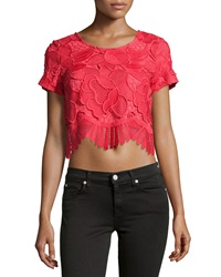 Lovers Friends Short Sleeve Lace Crop Top Coral