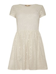 Yumi Lace Shift Dress Cream