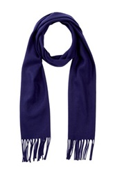 Amicale Solid Color Scarf Blue