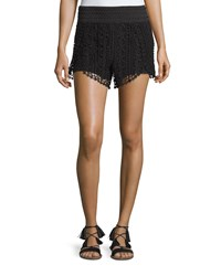 Philosophy Crochet Scalloped Shorts Black