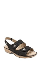 Women's Softwalk 'Bolivia' Sandal Black Perforated Leather