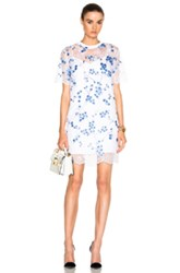 Carven Lace Dress In White Blue Floral White Blue Floral