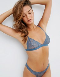 Asos Ria Basic Lace Mix And Match Triangle Bra Blue