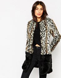 Glamorous Leopard Faux Fur Coat With Border Blackgrey