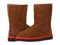 Ugg Classic Short Leather Chestnut Leather Sheepskin Men's Boots Brown