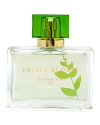 Privet Bloom Eau De Parfum 1.7Oz Hampton Sun