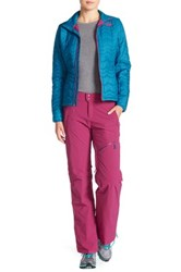 The North Face Jeppeson Pant Purple